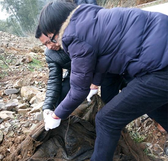 乡党委书记带队全体乡村干部环境整治。