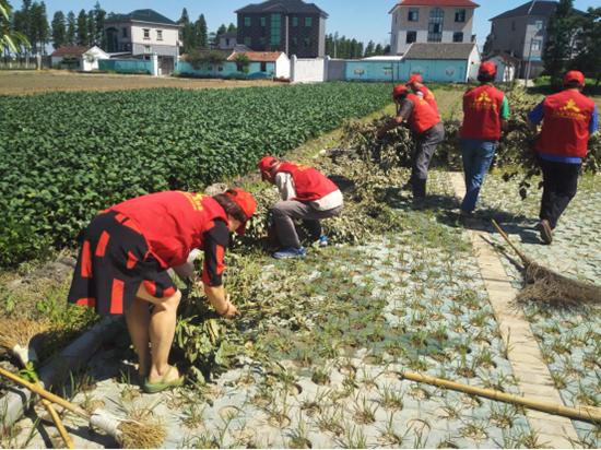 元通党员志愿服务助力小城镇环境卫生整治。