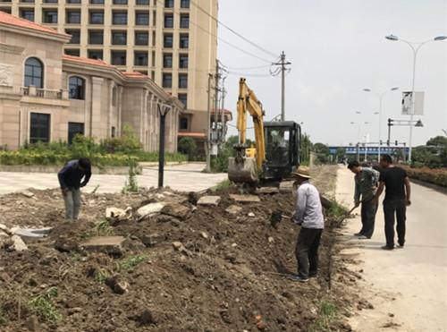小城镇环境综合整治项目浒崇公路居住小区周边配套提升工程(星海湾小区周边配套)。