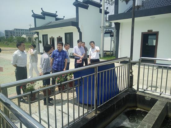 省领导亲自视察溪口镇环境整治工作。