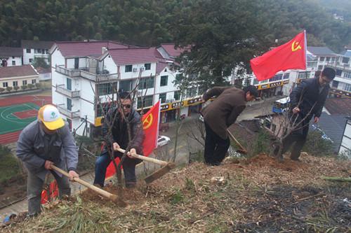 七里乡党员干部和大头村党员干部植树。